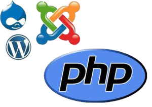 php training in bhubneswar